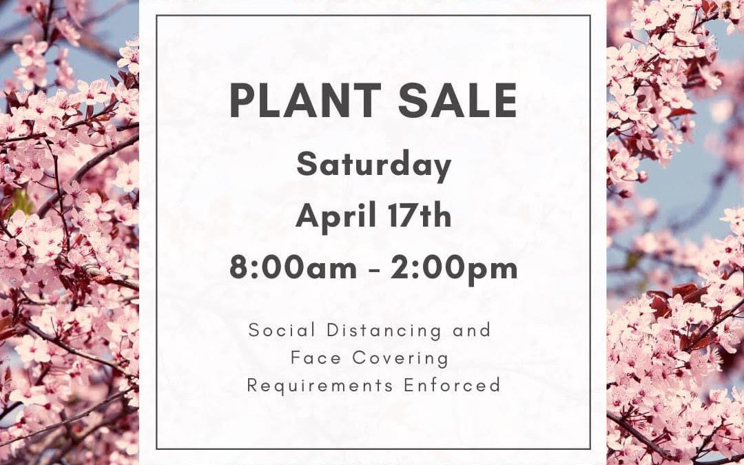 Corinth 2021 Spring Plant Sale