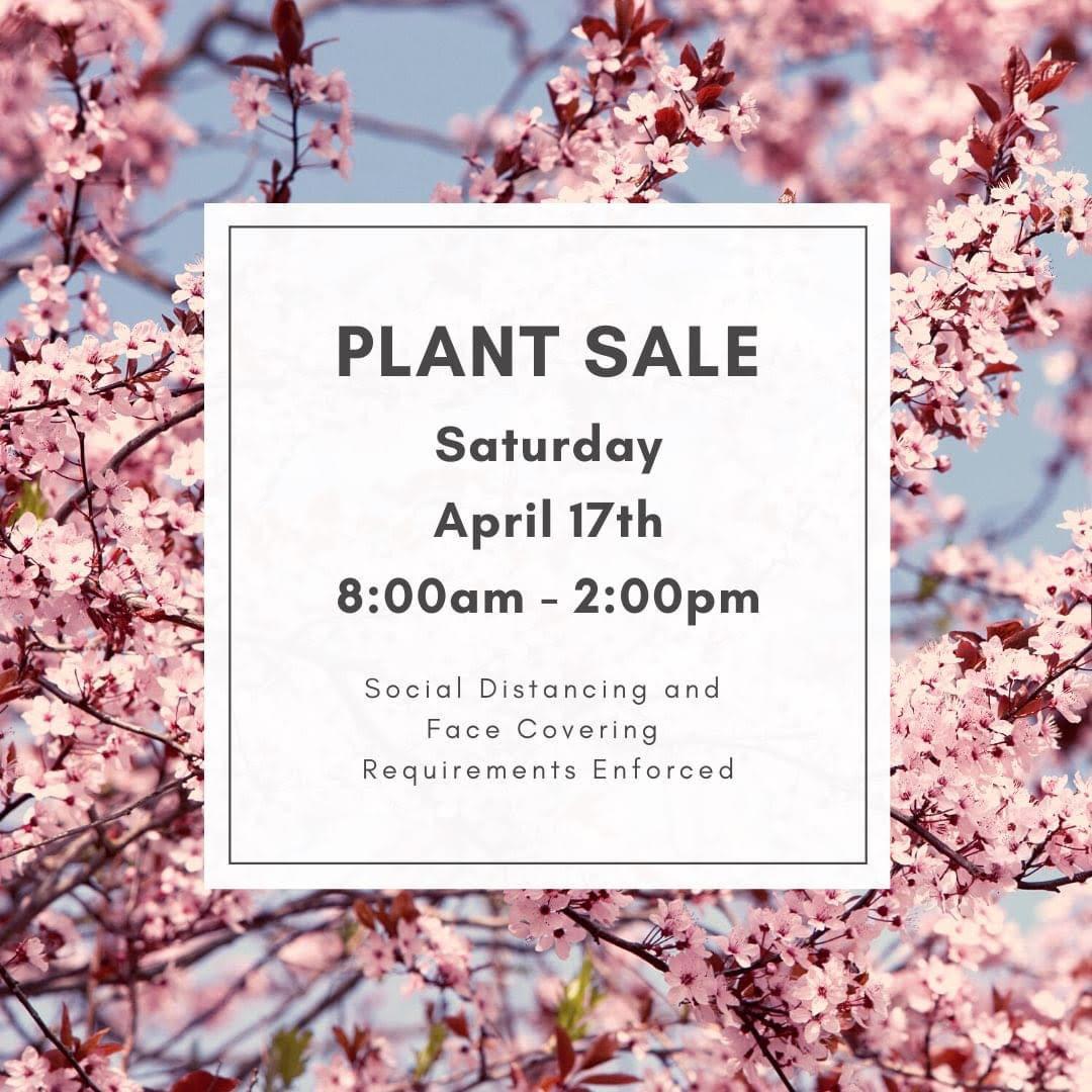 CHHS Plant Sale